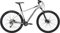 "Велосипед 29"" Cannondale TRAIL 6 2019 SLV серебристый"